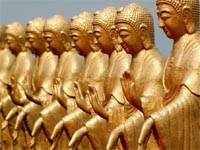 the 480 buddhas