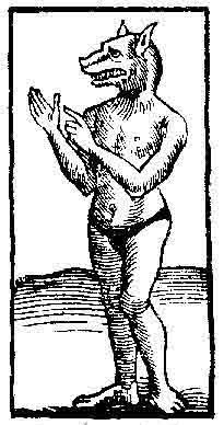 Lycanthrope or werewolf, woodcut, from the Cosmographia of Sebastian Muenster, Basel 1555.